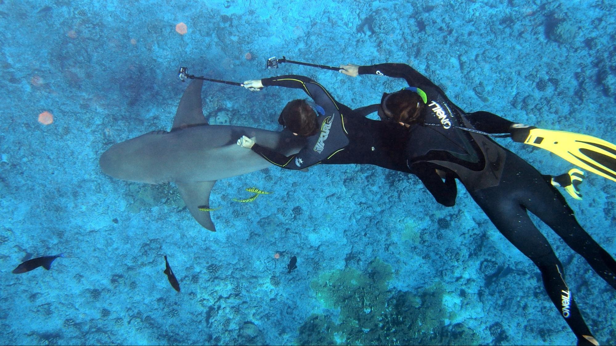 Гидрокостюм для дайвинга и подводной охоты